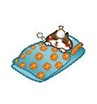 ハワイのSERIの愛猫ViViスペシャル①(個別スタンプ:32)