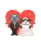 ハワイのSERIの愛猫ViViスペシャル①(個別スタンプ:36)