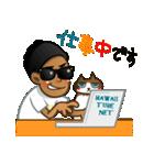 ハワイのSERIと太め癒し猫のViVi