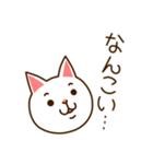 九州んにき4(個別スタンプ:01)