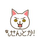 九州んにき4(個別スタンプ:20)