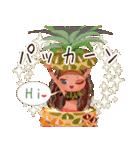 ハワイの休日 CHOU CHOU フラ&タヒチアン(個別スタンプ:25)