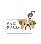 動物ふきだし 1(個別スタンプ:24)