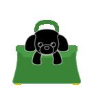 かばんの中のトイプードル(個別スタンプ:01)