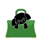 かばんの中のトイプードル(個別スタンプ:02)