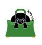 かばんの中のトイプードル(個別スタンプ:05)