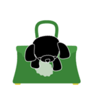 かばんの中のトイプードル(個別スタンプ:10)