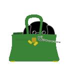 かばんの中のトイプードル(個別スタンプ:20)