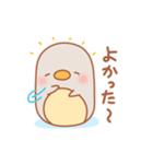 ふうぺんと遊ぼう(個別スタンプ:01)