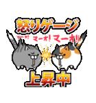 ボンレス猫(怒)(個別スタンプ:36)