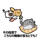 ボンレス猫(怒)(個別スタンプ:38)
