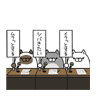 ボンレス猫(怒)(個別スタンプ:39)