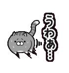 ボンレス猫(煽)(個別スタンプ:05)