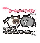 ボンレス猫(煽)(個別スタンプ:36)