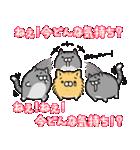 ボンレス猫(煽)(個別スタンプ:37)