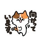 連絡にゃんこ(個別スタンプ:02)