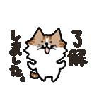 連絡にゃんこ(個別スタンプ:17)