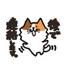 連絡にゃんこ(個別スタンプ:31)