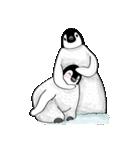 Chubby Penguins(個別スタンプ:21)