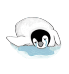 Chubby Penguins(個別スタンプ:35)
