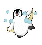 Chubby Penguins(個別スタンプ:39)