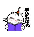 お灸猫「文太」vol.4 日常会話編