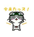 ヒロ猫(グリーン)(個別スタンプ:01)