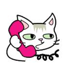 猫ねこコネコ(個別スタンプ:10)