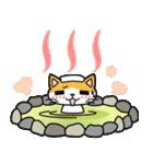 猫ねこコネコ(個別スタンプ:21)