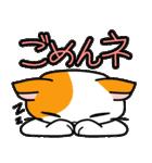 猫ねこコネコ(個別スタンプ:24)