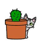 猫ねこコネコ(個別スタンプ:26)