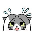 猫ねこコネコ(個別スタンプ:27)