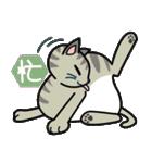 猫ねこコネコ(個別スタンプ:31)