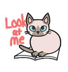 猫ねこコネコ(個別スタンプ:33)