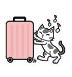 猫ねこコネコ(個別スタンプ:39)