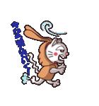白猫「けなげ」の にゃんだかRabbiちゃん(個別スタンプ:37)