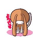 白猫「けなげ」の にゃんだかRabbiちゃん(個別スタンプ:40)