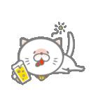 白くて丸い猫