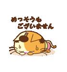 猫のニャンコ侍でござる(個別スタンプ:11)
