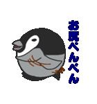 ぺんぺんぎん(個別スタンプ:01)