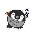 ぺんぺんぎん(個別スタンプ:25)