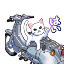 かわいいネコと原付スクーター(個別スタンプ:02)
