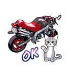 かわいいネコと原付スクーター(個別スタンプ:04)
