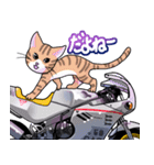 かわいいネコと原付スクーター(個別スタンプ:07)