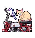 かわいいネコと原付スクーター(個別スタンプ:09)