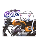かわいいネコと原付スクーター(個別スタンプ:10)