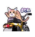 かわいいネコと原付スクーター(個別スタンプ:15)