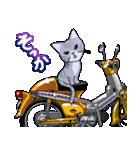 かわいいネコと原付スクーター(個別スタンプ:16)