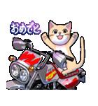 かわいいネコと原付スクーター(個別スタンプ:17)