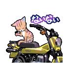 かわいいネコと原付スクーター(個別スタンプ:19)